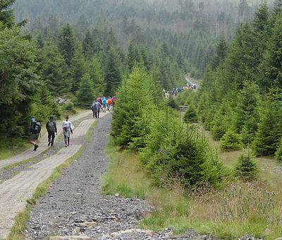 Wanderer auf dem Harzer Grenzweg